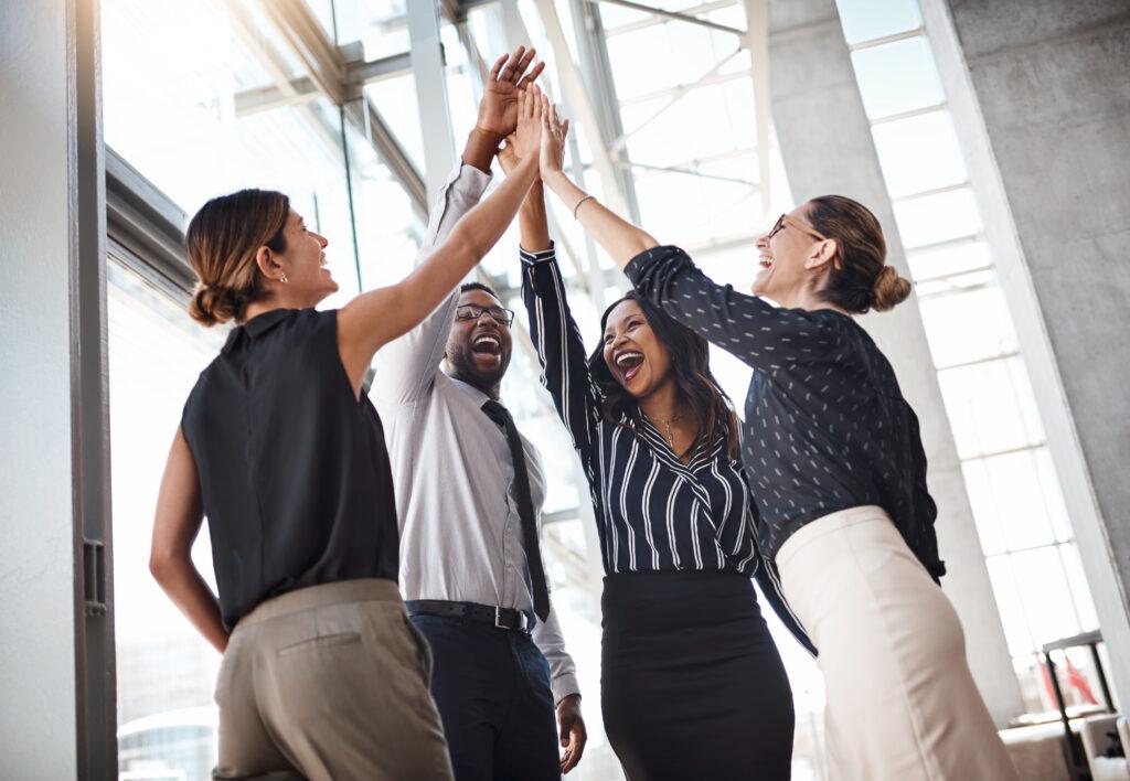 Solowka - Organizational Effectiveness